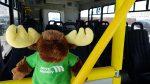 Move Mobility wheelchair van mascot
